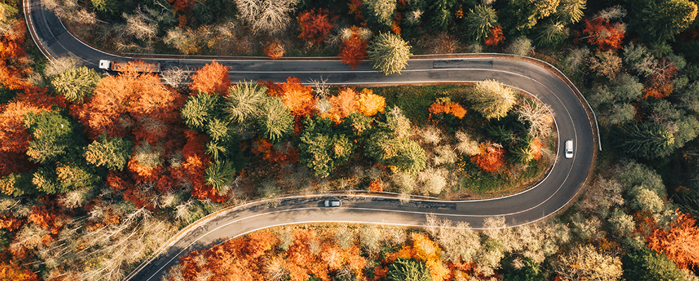 3 Best Road Trips to Watch the Leaves Change
